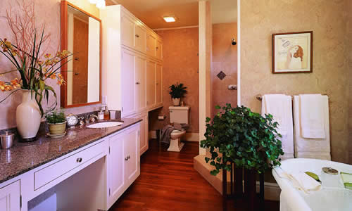 Orlando are bathroom addition builder